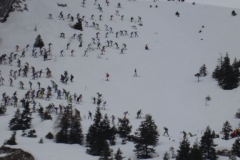 SKI ALP 3 Presolana 2011 058