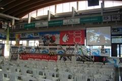 SKI-ALP-3-2012-008